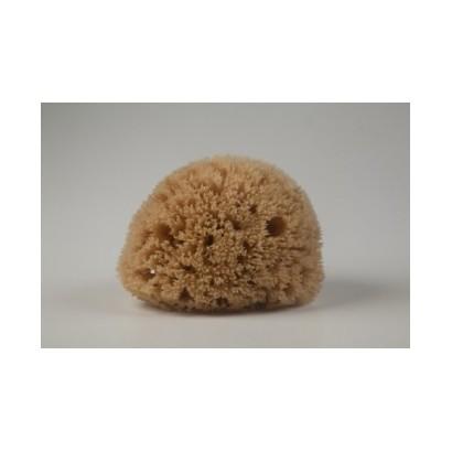 Natural Mediterranean Honeycomb bath sponges from Kalymnos Island