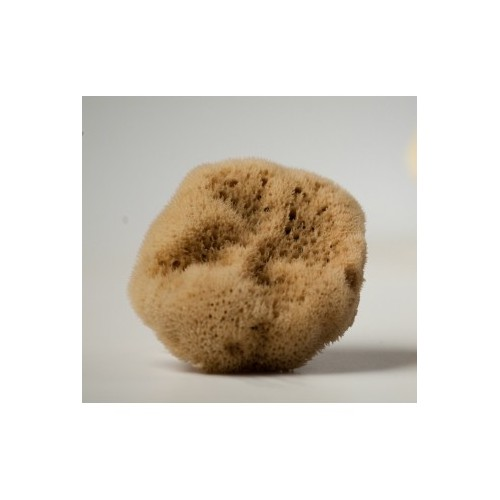 Make up Removal and Application fine silk UNBLEACHED sea sponges-set of 5   / 3,5-5cm  from Kalymnos Island