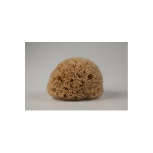 Natural Mediterranean Honeycomb bath sponges from Kalymnos Island